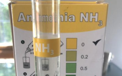 Ammonia Removal from Water Supply